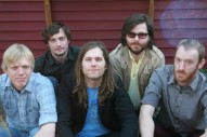 "New Fruit Bats – ""The Ruminant Band"" (Stereogum Premiere)"