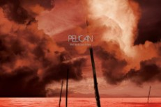 pelican-what-we-all-aa.jpg