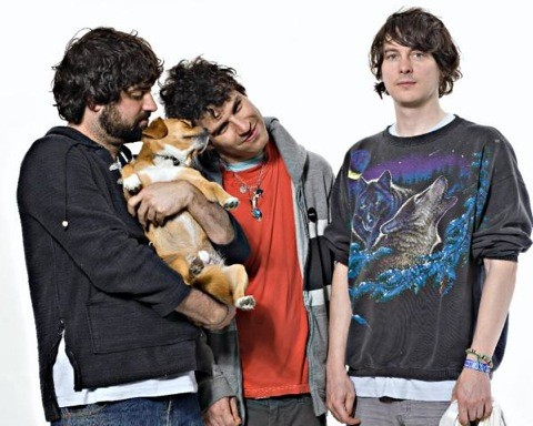 animal-collective-graze.jpg