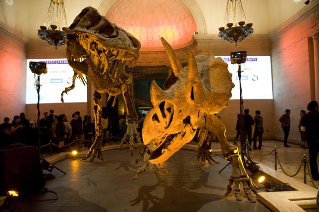 Yeasayer/Warpaint @ Natural History Museum, Los Angeles 2/5/10 25