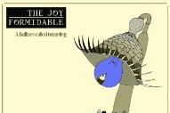 "The Joy Formidable – ""Whirring"" (BRAHMS Remix)"