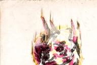 "The Acorn – ""No Ghost"" (Stereogum Premiere)"