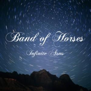 Infinite Arms Album Art