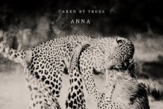 Taken By Trees -