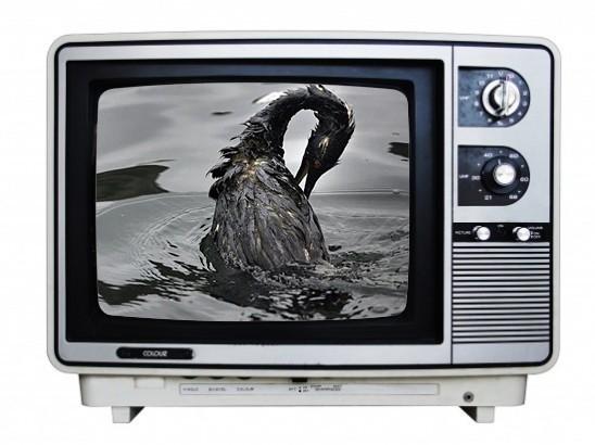 tv_oil