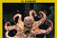 "El Guincho – ""FM Tan Sexy"""