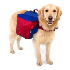 dog_backpack