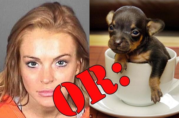 Lindsay Lohan New Mugshot