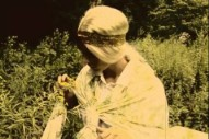 """Mice Parade – """"In Between Times"""" Video"""