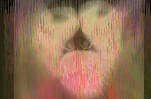 "Avey Tare ""Lucky 1"" Video"