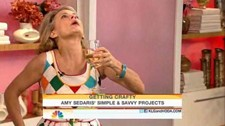 Amy Sedaris Today Show