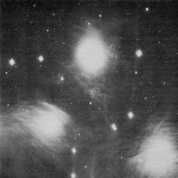 Grouper - Alien Observer