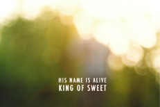 His Name Is Alive - King Of Sweet