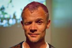 Flea 2011