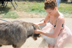 Joanna Newsom Pets A Dog
