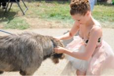 Joanna Newsom Pets A Dog