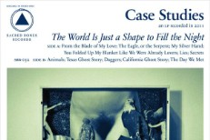 Case Studies - The World Is Just A Shape To Fill The Night