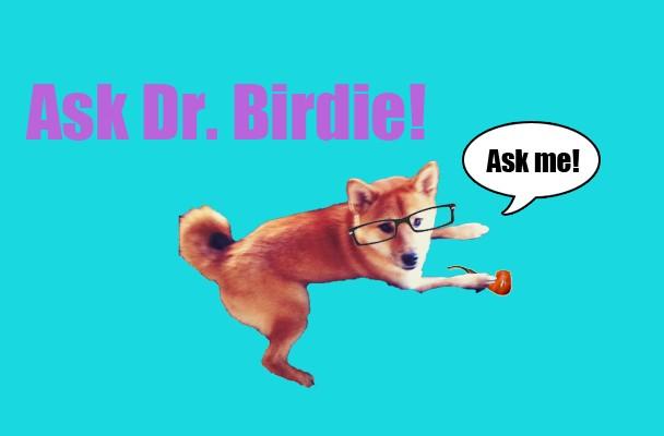 dr_birdie