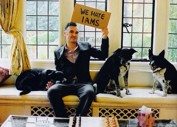 Moz Attacked By Dog