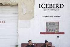 "Icebird - ""Going And Going. And Going"""