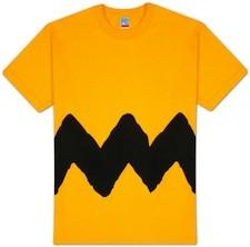 charliebrownshirt