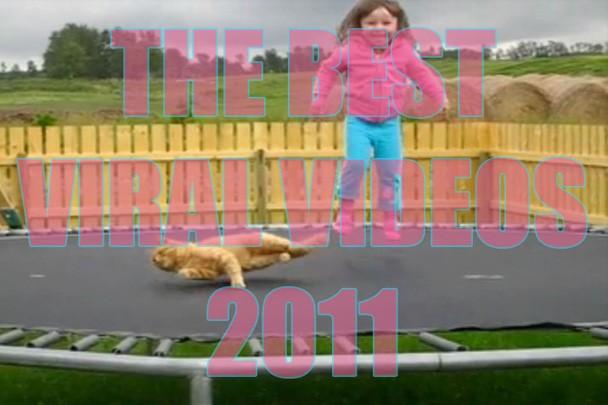 best_viral_videos_2011