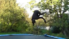 trampoline_accident