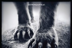 Album Of The Week: Shearwater <em>Animal Joy</em>
