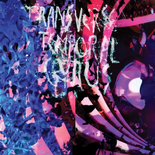 Animal Collective - Transverse Temporal Gyrus