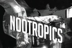 Stream Lower Dens <em>Nootropics</em>