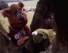 muppet_footage
