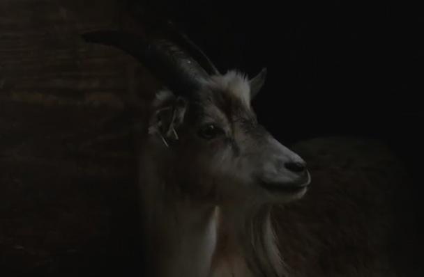 "Sigur Rós – ""Ég Anda"" Video (Mystery Film Experiment Version)"