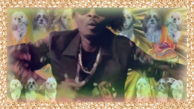 "Danny Brown - ""Wit It"" Video"
