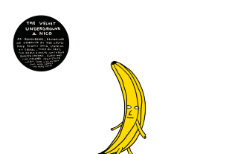 The Velvet Underground & Nico by Castle Face and Friends