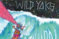 "Wild Yaks – ""A Million Years"""