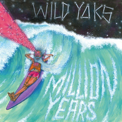 Wild Yaks -