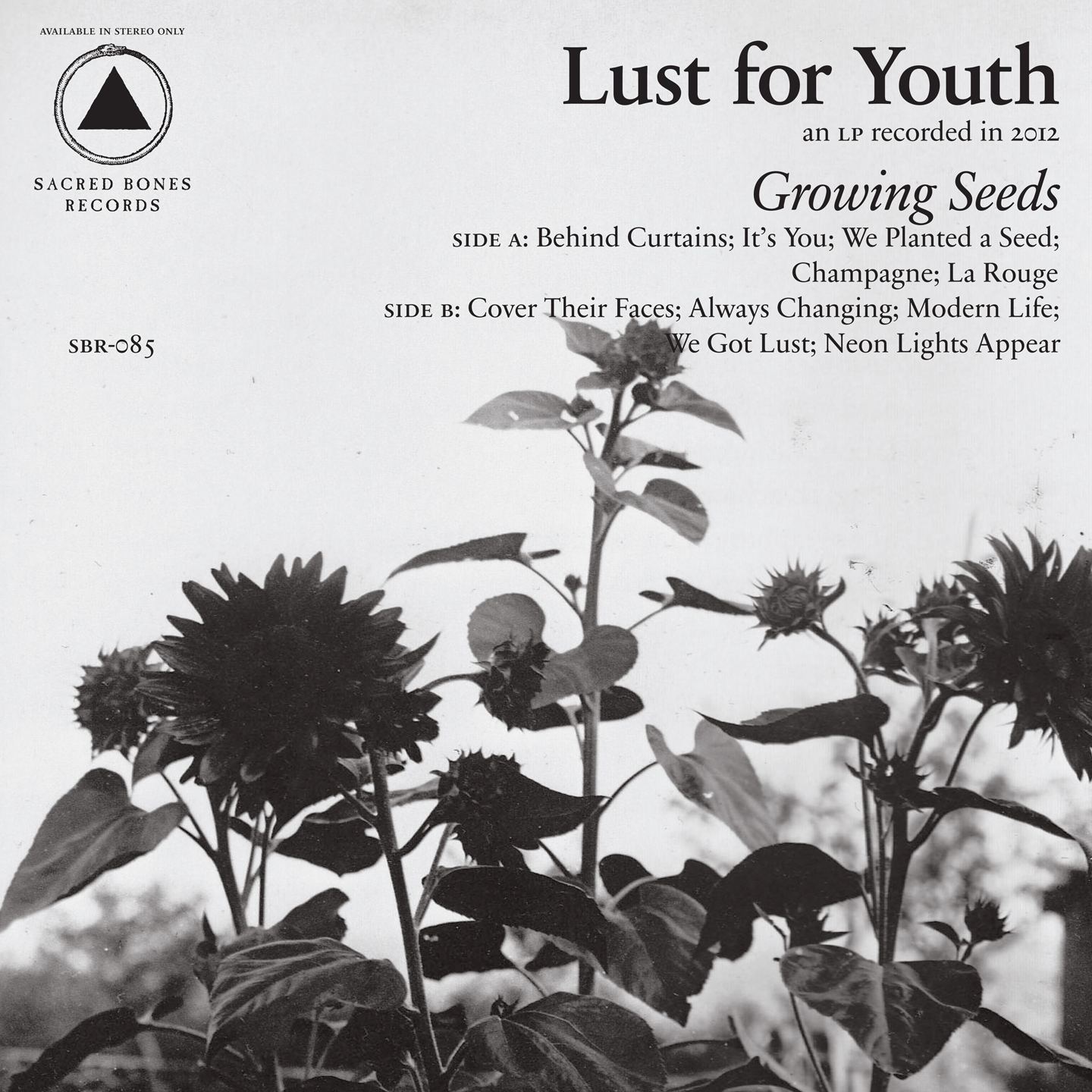 "Lust For Youth – ""It's You"""