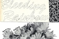 "Bleeding Rainbow – ""Waking Dream"""
