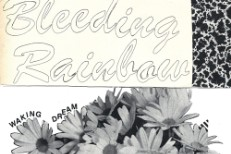 Bleeding Rainbow -