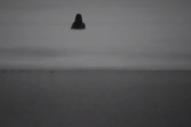 """Moonface – """"Headed For The Door"""" Video"""