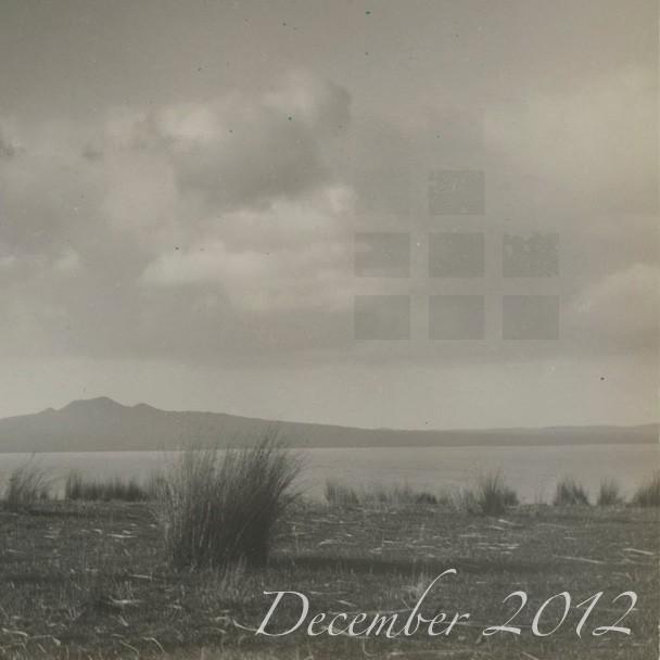 Stereogum Monthly Mix: December 2012