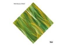 """Wild Beasts – """"Stray"""""""