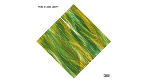 """Wild Beasts - """"Stray"""""""