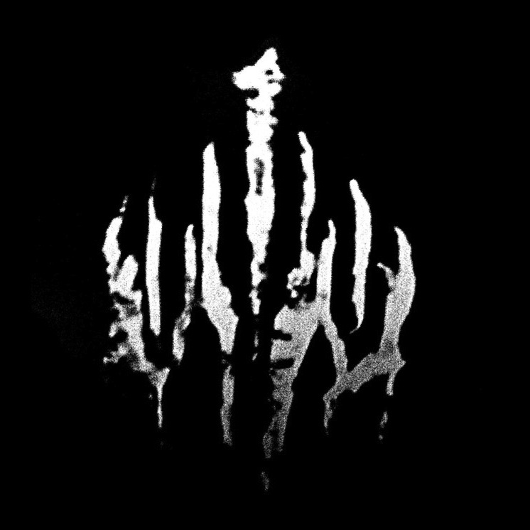 Wylve - Wylve