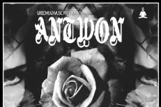 Antwon - In Dark Denim