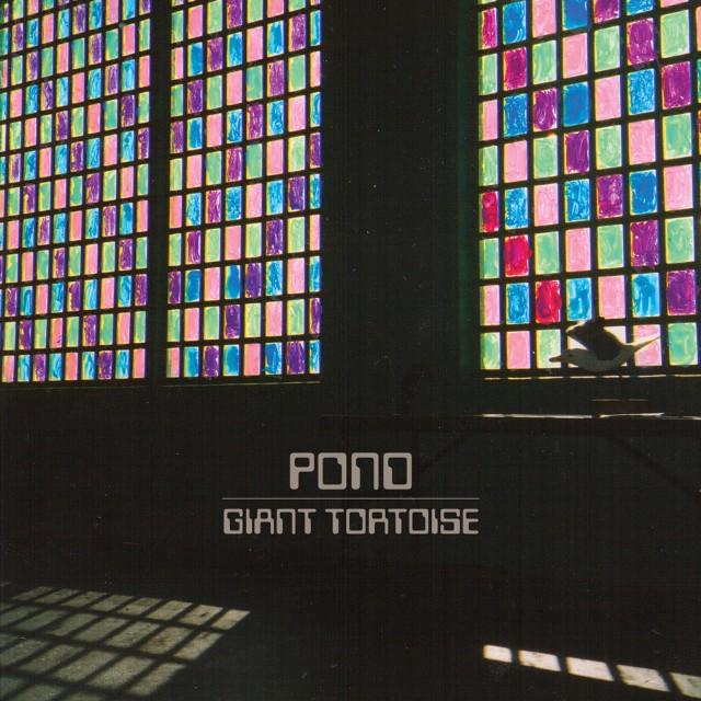 "Pond - ""Giant Tortoise"""