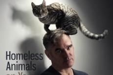 Staples Center Going Vegetarian For Morrissey