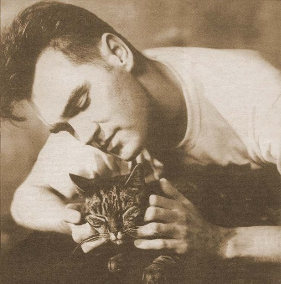 Morrissey And Cats: A Pictorial History