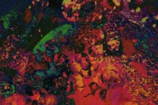 Tame Impala - Mind Mischief cover