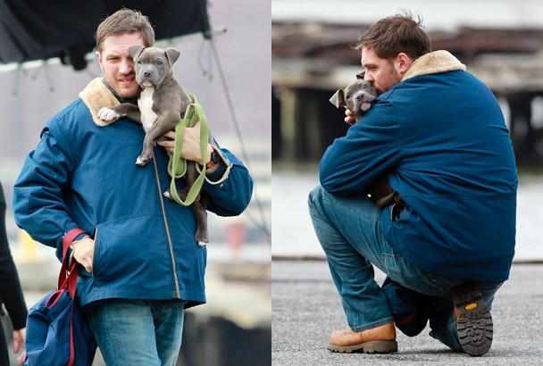 tom_hardy_puppy